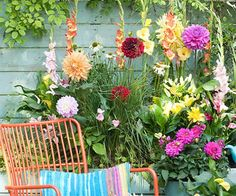 Welke tuin past bij jou?
