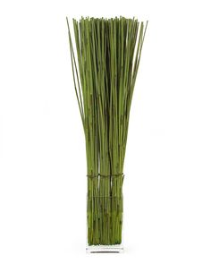Vase Website And Gold On Pinterest