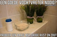 Op zoek naar een goede vochtvreter? Probeer eens een bakje met droge rijst en zout. Meer tips? www.goedeschoonmaaktips.nl