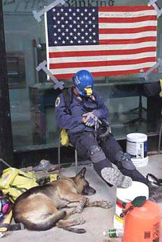 Tribute to 9-11 WTC Search & Rescue Dogs | PawshPal.com Blog