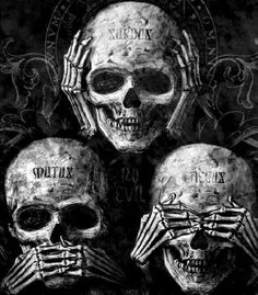 Skulls and Skeletons: Hear No..., Speak No..., See No Evil Skulls.