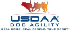 What is USDAA Intro? FREE ebook explaining the ins and outs of the Intro program! | Kama ❤️️s Agility