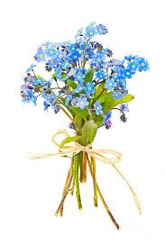 Image result for forget me nots drawing tattoo idea