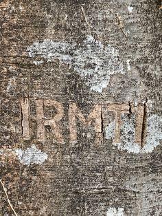 Baum geritzt# Geschnitzte Initialen# Rinde geritzt# Foto# Interessant was man an Bäumen so findet. City Photo, Outdoor, Pictures, Kinetic Art, Contemporary Art, Wood Carvings, Sculptures, Tree Structure, Wedding