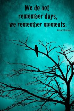 We Don't Remember Days, We Remember Moments