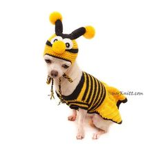 Bee Dog Costume, Halloween Dog Costume, Bee Crochet Dog Hats, Chihuahua Clothes, Personalized Dog Cl