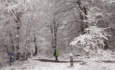 La nieve ha vuelto a hacer acto de presencia en Navarra ya entrada la primavera.