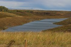 Transalta reclaimed open pit coal mine near Wabamun, Alberta, now a new water shed for migratory water fowl.