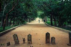 Sri Lanka 5 by ~nbknew