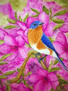 Watercolor - Eastern Blue Bird