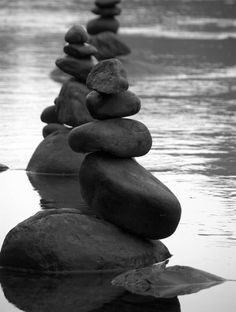Andy Goldsworthy reminds me that when you change the way you look at things, the things you look at ... change.