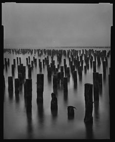 Piers, New York Mark Seliger
