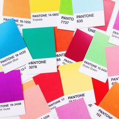 Pantone Cards //