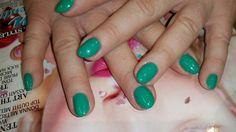 Gelpolish Bermuda Green Magnetic Nail Design