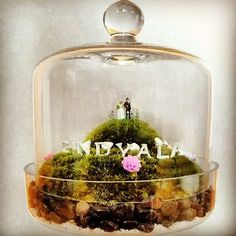 Puff Wedding Terrarium, cute centerpiece or cake topper idea