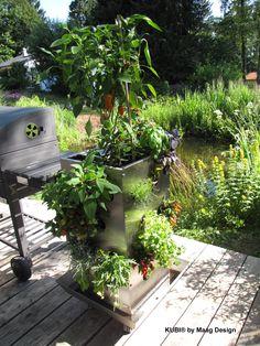 KUBI - ein ganzer Garten auf 1m². Das erste Hochbeet mit internem #Komposter, der eigene Erde für die rund um wachsenden Pflanzen erschafft. Du gibst #Küchenkompost hinein, und #Regenwürmer machen den Rest. Du kannst bis zu 50 Pflanzen auf 1m² anpflanzen. Egal ob Erdbeeren, Gemüse, Blumen oder Kräuter. Auf Rollen kann er leicht bewegt werden und durch den #Wasserspeicher sind alle Pflanzen langfristig versorgt. So kann man auf dem #Balkon oder auf der #Terrasse anbauen.