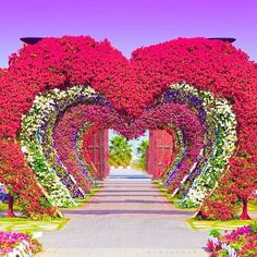 Tag someone you love ✨❤️✨ Dubai Miracle Garden - U.A.E. Picture by ✨@JhimGreg✨ edited by ✨@Izkiz✨ Good morning all