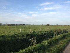 Lovely early evening walk