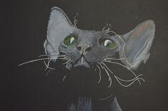 Ilustración realismo sobre cartulina, técnica lapices de color.