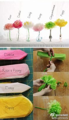 Cute! DIY different types of tissue paper flowers