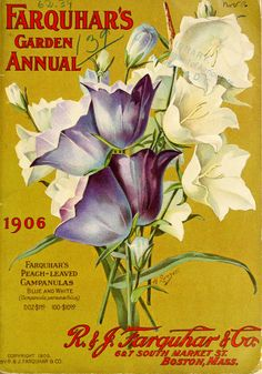 Farquhar's garden annual / R. Farquhar Company :: Nursery and Seed Catalogs Seed Illustration, Botanical Illustration, Botanical Art, Garden Catalogs, Seed Catalogs, Seed Packaging, Flower Packaging, Vintage Prints, Vintage Posters
