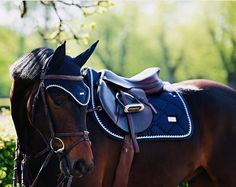 Why do you think is it essential to consider the proper suggestions in acquiring the equestrian boots to be utilized with or without any horseback riding competitors? Equestrian Boots, Equestrian Outfits, Equestrian Style, Riding Hats, Horse Riding, English Riding, English Tack, English Horse Tack, English Saddle