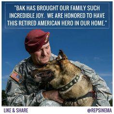 Congresswoman Kyrsten Sinema We introduced the Military Working Dog Retirement Act for four-legged veterans like Bak.