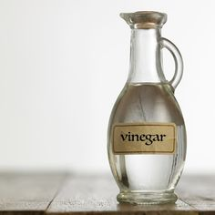 Remedies For Water Retention white vinegar for pest control - Don't let pests take over your home this spring and summer. Keep these simple and effective solutions handy, so you can act fast if a pest problem arises. Best Pest Control, Bug Control, Bees And Wasps, Pest Management, Neem Oil, Humming Bird Feeders, Garden Guide, Garden Pests, Garden Insects
