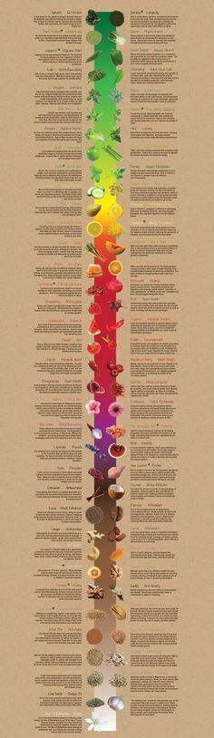 @createexpress // Ingredients - Kreation Juice Organic. Health food benefits. Eat the rainbow!