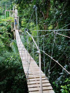 to go into the world : the artwork of mae chevrette Suspension Bridge, The Other Side, Bridges, Summer Fun, Wander, To Go, Mood, Outdoor Decor, Artwork