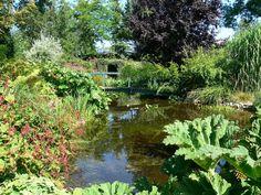Goldhoorn Gardens, Klutenweg 13 te Bant van Elly Kloosterboer ademen de sfeer die Engelse tuinen oproepen, hetgeen versterkt wordt door een landwinkel met zeer Britse artikelen aan het begin van het erf waarop de grote tuinen verscholen liggen. Regelmatig voor het publiek geopend : http://goldhoorngardens.nl/