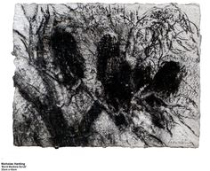 Nicholas Harding, 2014 Fire is a constant of the Australian bush. The Yuraygir scrub, a favoured motif of mine, is speckled and etched with floras' charred remains. Drawing with the charcoal of a bushfire transforms the destructive into the creative, just as fire is necessary for the bush's regrowth. This charcoal drawing depicts burnt banksia in the light of this regeneration by flame.