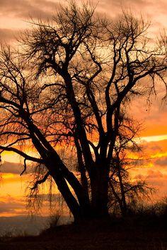 ✮ Boulder County Sunset