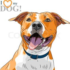 6826802-vector-sketch-smiling-dog-american-staffordshire-terrier-breed.jpg (800×800)