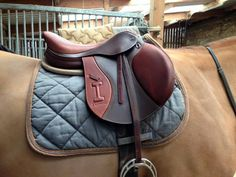 www.horsealot.com, the equestrian social network for riders & horse lovers | Equestrian Fashion : Ikonic saddle.
