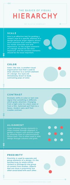 The Basics of Visual Hierarchy (and why it's important for your website!) - Elle…
