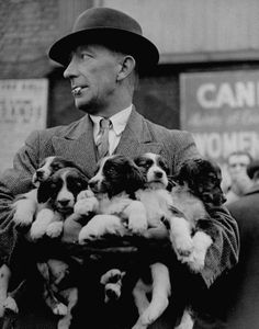 1946 Club Row Pet Market, Spitalfields, London  (Does he work for Cruella DeVille????)