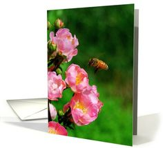 Honeybee with Wild Roses - Blank card  http://www.greetingcarduniverse.com/collections/animals-pets/bees-wasps-hornets/honeybee-with-wild-roses-446771?gcu=42967840600