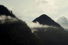 #pale #mountains #trees #landscape #mist #fog