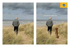 Pedigree: Dog, 2