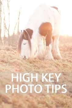 Tips for taking high key style photos where the image is very bright overall, often giving an ethereal and dreamy feel, using natural or artificial light.