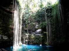 Enjoy one of the most beautiful cenotes in the Yucatan Peninsula. Cenote Ik Kil is located on the highway between Chichen Itza (it's only a couple of miles away from the archeological site) and Valladolid Cancun Tours, White Sky, Days Of The Year, Archaeological Site, Natural Phenomena, Belize, The Good Place, Places To Go, Waterfall