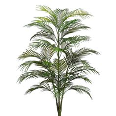 4' Plastic Areca Palm Tree x5 w/33 Leaves Green (Pack of 4) >>> Find out more about the great product at the image link.