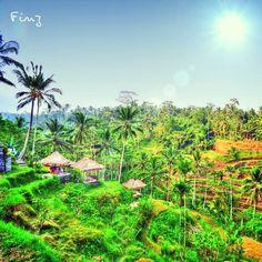 Kintamani, Bali - @finz_89- #webstagram