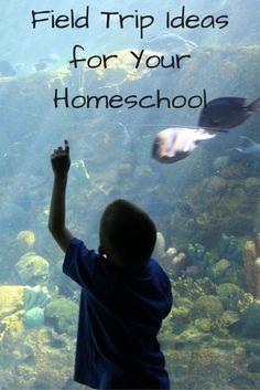 homeschooling field trips