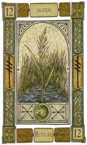 "Celtic Oracle Card,""Reed"" Ogham: nGetal. Keywords:Direction and Action;   Your practicality will guide your steps; an action undertaken will bear fruit if you are careful to not allow yourself to be drawn in another direction. There may likely be unforeseen changes on horizon so remain vigilant. Even if the changes are not considered obstacles they still require adjustment"