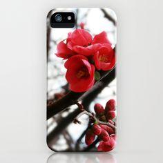 Spring Flowers iPhone & iPod Case by Tatiana Ivchenkova - $35.00