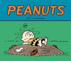 Snoopy, Charlie Brown, Linus, Lucy, and the rest of the PEANUTS family help keep busy weeks organized throughout the year. Each weekly spread of the PEANUTS 2017 Weekly Planner diary features a ful… Best Humor Books, Charlie Brown Peanuts, Weekly Planner, Snoopy, Comics, Weekly Spread, Calendar Calendar, Rest, Engagement
