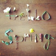 Spring is here! April Showers will bring May Flowers; and May flowers will bring June bugs! Grand Opening of my business - Hello Spring and NEW BEGINNINGS!