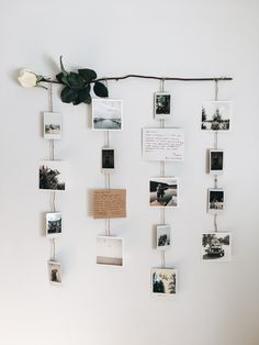 Flower picture display